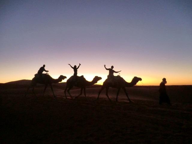 2011 Sahara desert morocco (24)